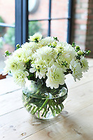 Detail of a simple flower arrangement of white blossoms on Kally Ellis's kitchen table