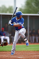 Los Angeles Dodgers Ariel Sandoval (22) during an instructional league game against the Cleveland Indians on October 15, 2015 at the Goodyear Ballpark Complex in Goodyear, Arizona.  (Mike Janes/Four Seam Images)