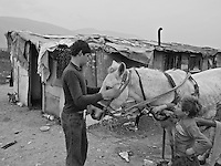Senad Seferovic prepares a horse and carriage to go collect water in a Roma camp in Sarajevo, Bosnia-Herzegovina on October 23, 2008..The Roma population in Bosnia-Herzegovina was heavily affected by the wars in the former Yugoslavia in the early 1990's. It is now estimated at 100,000, but there are no accurate figures, as many are not registered anywhere, either as a result of their own scepticism towards authorities, or due to difficulties in dealing with bureaucratic rules and procedures. Many Roma have no passports, no birth certificates and most importantly, no health insurance. Some aspects of their traditions, culture and lifestyle clash with accepted norms here, as happens elsewhere in Europe. As a result most Roma in the Balkans live in poverty.