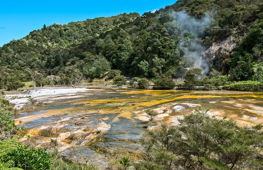 Colorful mineral spring at Waimangu Volcanic Valley, Rotorua