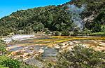 Colorful mineral spring at Waimangu Volcanic Valley, Rotorua