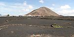 Volcano cone and black volcanic soil farmland, near Tinajo, Lanzarote, Canary Islands, Spain - Montana Tinache