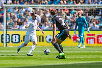 Leon Britton of Swansea ( right ) City in action during the Premier League match between Swansea City and West Bromwich Albion at The Liberty Stadium, Swansea, Wales, UK. Sunday 21 May 2017 (Photo by Athena Pictures/Getty Images)