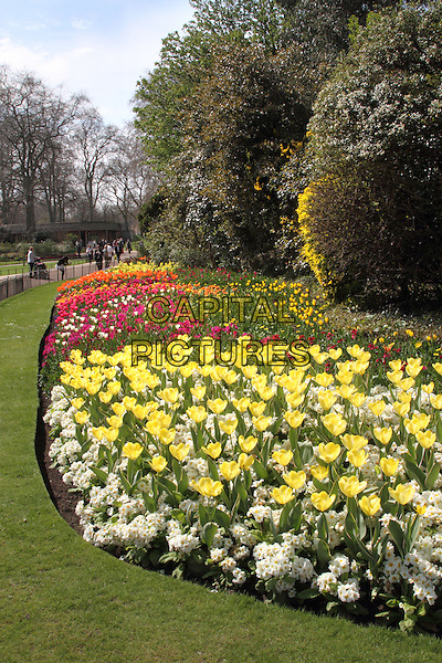 St James Park.Warm spring sunshine continues in Central London, England..April 24th 2013.gv general view season weather flowers plants flora.CAP/ROS.©Steve Ross/Capital Pictures