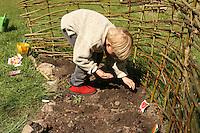 Junge, Kind legt sein eigenes kleines Gemüsebeet an, Saat, sät Gemüse, abgegrent durch einen Weidenzaun aus Weidenzweigen, Beet, Garten