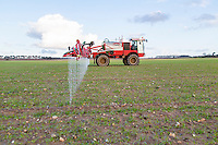 Applying liquid nitrogen to winter barley - Norfolk, February