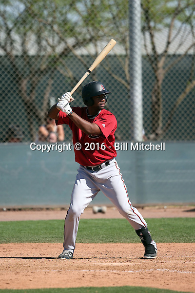 Ericson Leonora - Arizona Diamondbacks 2016 spring training (Bill Mitchell)