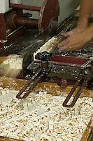 Europe/France/Rhône-Alpes/26/Drôme/Montélimar: Fabrication traditionnelle  du Nougat de Montélimar chez Eric Escobar - découpe des plaques en berlingots