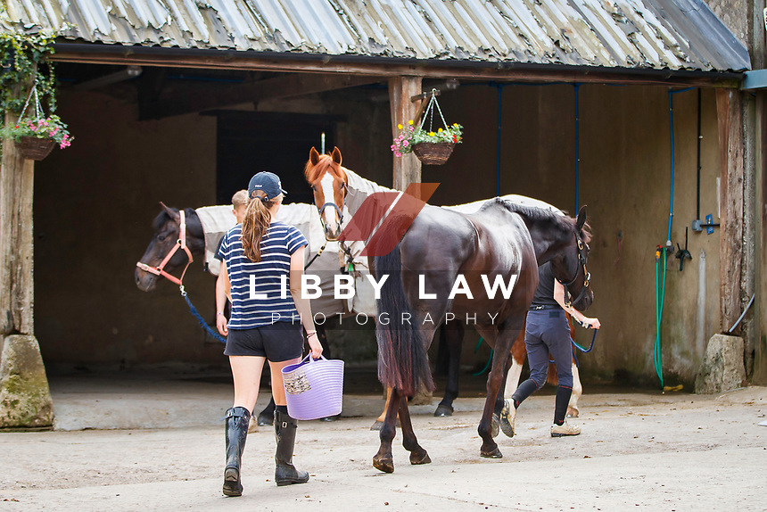 2018 YARD SHOOT: Tim and Jonelle Price - focusing on Badminton Champion, Classic Moet.  Copyright Photo: Libby Law Photography