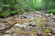 Remnants of a spur line along the East Branch & Lincoln Railroad (1893-1948) in the Pemigewasset Wilderness of New Hampshire. This spur line began off the railroad's North Fork Branch, at North Fork Junction, and traveled up this rocky brook bed.