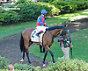 Are You Kidding Me before The Kent Stakes (gr 2) at Delaware Park on 9/7/13