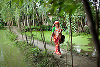 A widow, Rubi Begum, 40, walks through paddy fields to go from door to door in Ghagoa Villlage, Gobindagonj Upazila, Gaibandha, Bangladesh on 19th September 2011. Living alone after her husband's passing, she has now (since 2.5 years) found financial independence by working as a saleswoman, earning 3500 - 5000 Bangladeshi Taka per month. She is one of many rural Bangladeshi women trained by NGO CARE Bangladesh as part of their project on empowering women in this traditionally patriarchal society. Named 'Aparajitas', which means 'women who never accept defeat', these women are trained to sell products in their villages and others around them from door-to-door, bringing global products from brands such as BATA, Unilever and GDFL to the most remote of villages, and bringing social and financial empowerment to themselves.  Photo by Suzanne Lee for The Guardian