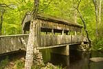 Devil's Hopyard State Park, East Haddam, CT. Covered Bridge over Eight Mile River.