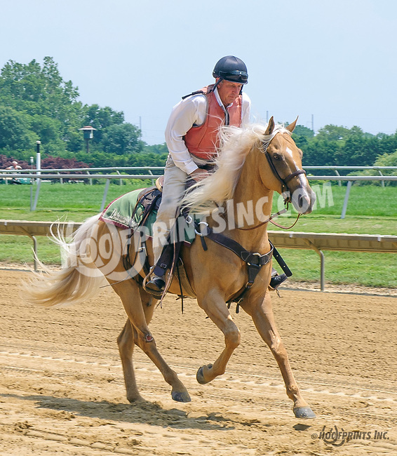 outriders at Delaware Park on 7/19/17