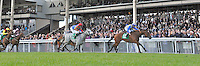An Saighdiur (no. 13), ridden by M.A. Cleere and trained by Andrew Slattery, wins the Paddy Power Sprint Stakes for three year olds and upward on June 30, 2012 at the Curragh Racecourse in Newbridge, Kildare, Ireland.  (Bob Mayberger/Eclipse Sportswire)