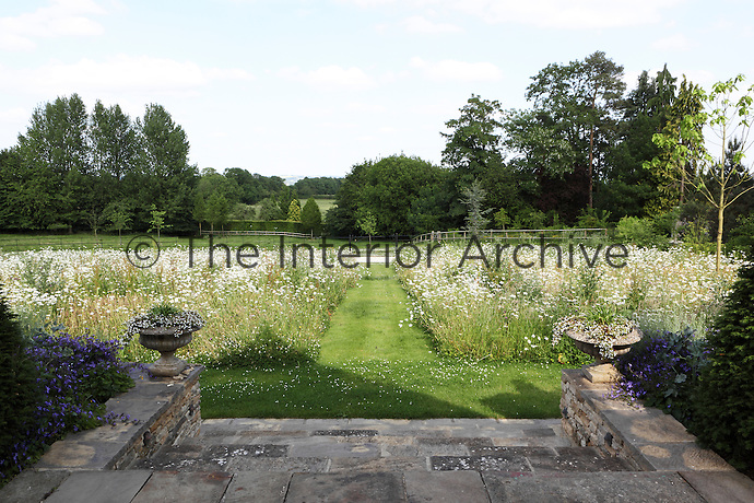 A grass path leads down from the entrance of the house between two large beds of wild flowers