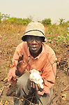 Uganda Cotton Highlights