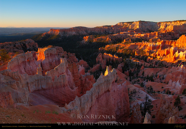 Queen's Garden at Sunrise from Sunrise Point, Bryce Canyon National Park, Utah