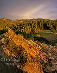 Eagle Peak, Emigrant Wilderness, Stanislaus National Forest, Sierra Nevada, California