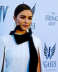 HALLANDALE BEACH, FL - JANUARY 27: Olivia Culpo on the Blue Carpet on Pegasus World Cup Invitational Day at Gulfstream Park Race Track on January 27, 2018 in Hallandale Beach, Florida. (Photo by Scott Serio/Eclipse Sportswire/Getty Images)