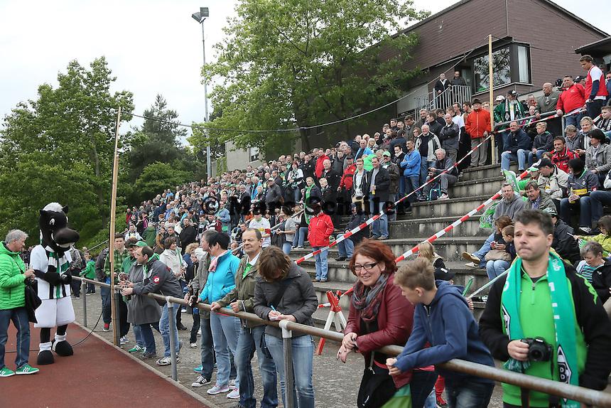 Viele Fans auf den Rängen