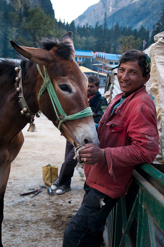 A horse guide on the trail to the Valley of Flowers and Hem Kund