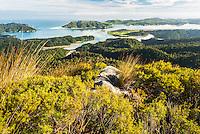 Whanganui Inlet on west coast and alpine vegetation, Nelson Region, West Coast, South Island, New Zealand