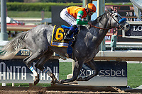 ARCADIA, CA  JUNE 2:  #6 Unique Bella, ridden by Mike Smith, wins the Beholder Mile (Grade l) on June 2, 2018 at Santa Anita Park in Arcadia, CA. (Photo by Casey Phillips/Eclipse Sportswire/Getty Images)