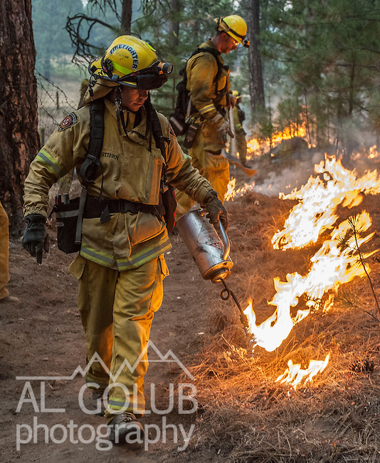 Firefighters from Sacramento Metro burn around old cabin Ackerson Meadow Near Yosemite National Park.