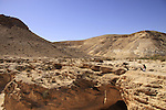Israel, Negev, Ein Yorkeam in the Large Crater