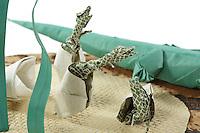 Detail of Origami model.<br /> Crocodile designed by Manuel Sirgo Alvarez, folded by Rosalind Joyce<br /> Hatching Alligator designed by Tran Trung Hieu, folded by Rosalind Joyce<br /> Broken Dinosaur Egg designed by John Montroll, folded by Rosalind Joyce<br /> Grass designed an folded by Rosalind Joyce