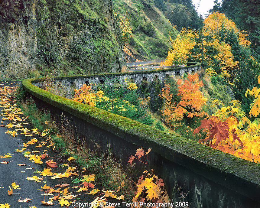 USA, Oregon, Columbia River Gorge National Scenic Area, Original section of the historic Columbia River Highway in fall near the town of Hood River..
