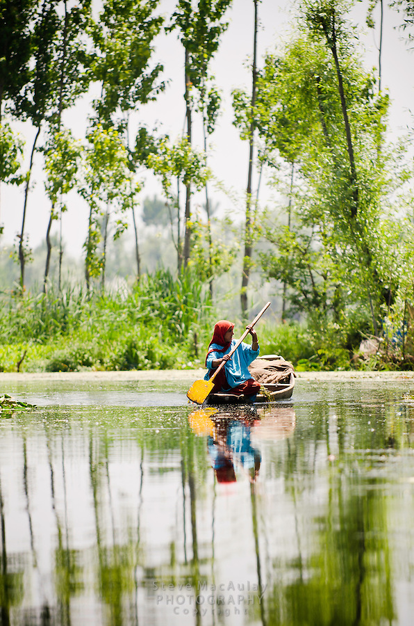 Kashmiri woman paddling traditional shikara down tree-lined backwater channel, Dal Lake, Srinagar, Kashmir, India.