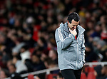 Arsenal's Unai Emery looks on during the UEFA Champions League match at the Emirates Stadium, London. Picture date: 28th November 2019. Picture credit should read: David Klein/Sportimage