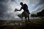Lewis Fernands waters his vegetable garden in Hiowa, Guyana.