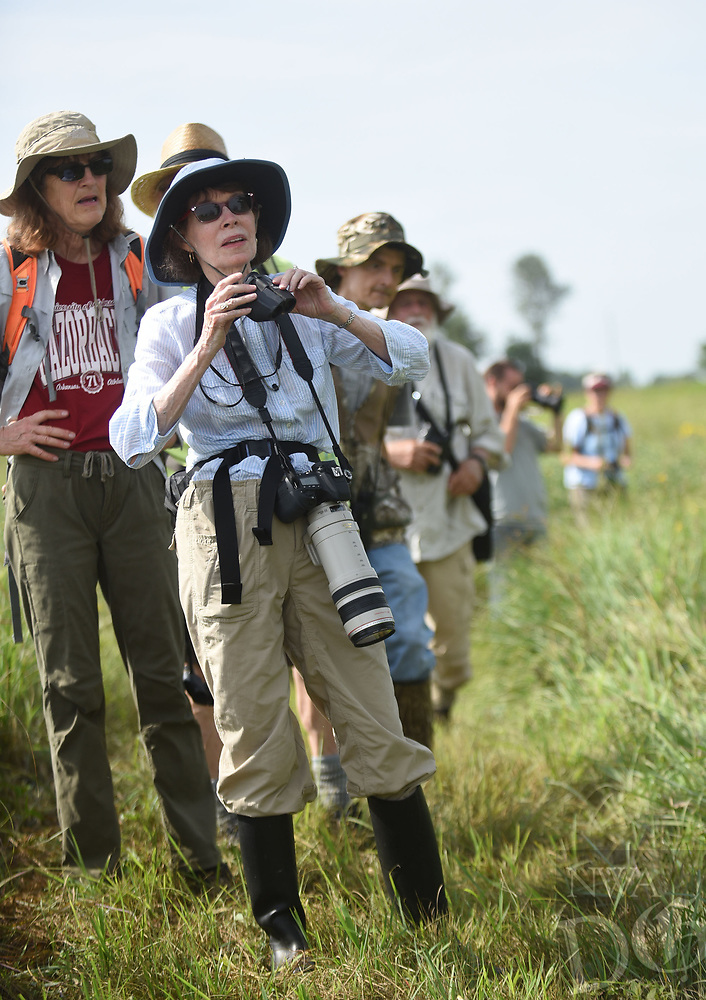 NWA Democrat-Gazette/FLIP PUTTHOFF <br /> BIRDS OF A FEATHER<br /> Phyllis Kane (center) of Fayetteville looks at birds on Saturday July 6 2018 during a Northwest Arkansas Audubon Society field trip at Chesney Prairie Natural Area near Siloam Springs. An array of wildflowers and birds were seen on the walk through the 83-acre prairie. It's one of the few tallgrass prairie remnants left on the Arkansas portion of the Springfield plateau. Some 300 plant species are found on the tract.