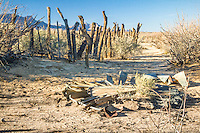 The Lucero Ranch lies within the White Sands National Monument and is composed of stock pens, a watering trough, a well, and a fallen wind pump. Visitors can view the ranch on Lake Lucero tours.