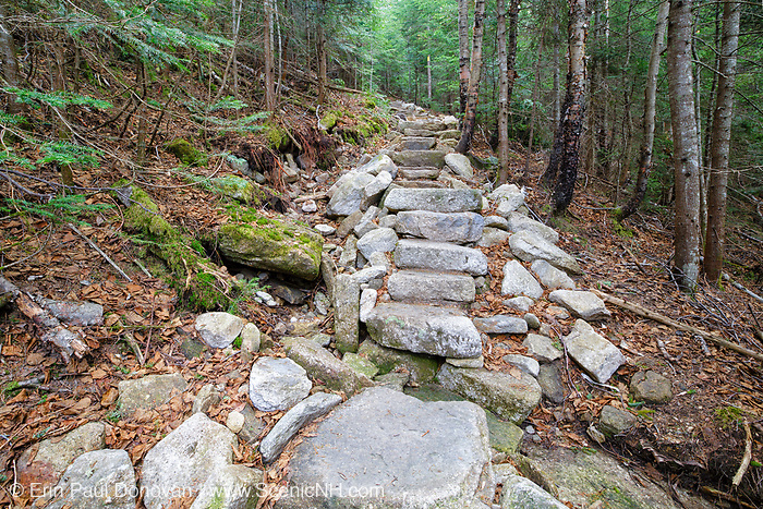May 2015 - Trail erosion near stonework along the Mt Tecumseh Trail in Waterville Valley, New Hampshire. When this staircase was built in 2011, two holes on the hill-side of the steps were not filled in. And the hole above the moss covered rock has continued to erode away and has tripled in size since this trail work was done. See image number: SC1116291 for a comparison.