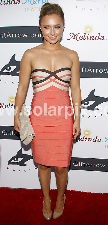 **ALL ROUND PICTURES FROM SOLARPIX.COM**.**SYNDICATION RIGHTS FOR UK, SPAIN, PORTUGAL, AUSTRALIA, S.AFRICA & DUBAI (U.A.E) ONLY**.arrivals for the Hayden Panettiere Hosts Whaleman Foundation Benefit at Beso - Hollywood, CA, USA. 10th August 2008..This pic: Hayden Panettiere..JOB REF: 6994 PHZ/Ortega    DATE: 10_08_2008.**MUST CREDIT SOLARPIX.COM OR DOUBLE FEE WILL BE CHARGED* *UNDER NO CIRCUMSTANCES IS THIS IMAGE TO BE REPRODUCED FOR ANY ONLINE EDITION WITHOUT PRIOR PERMISSION*