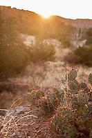 Palo Duro Canyon - Canyon, Texas