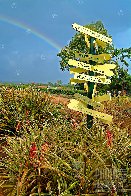 A rainbow arches over the Dole Pineapple Plantation on O'ahu, fronted by a signpost indicating near and distant locations.
