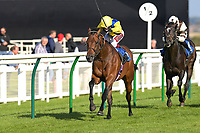 Winner of The Lester Brunt Wealth Management Handicap, Starfighter ridden by Oisin Murphy and trained by Ed Walker during Racing at Salisbury Racecourse on 5th September 2019