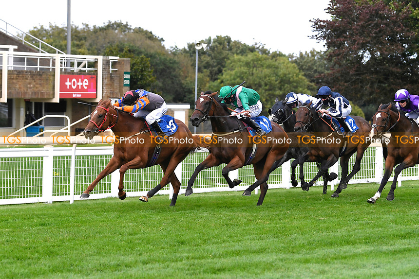 Winner of The Venture Security Handicap Stakes Molly Shaw (11, green) ridden by Jack Mitchell and trained by Chris Wall  during Horse Racing at Salisbury Racecourse on 11th September 2020