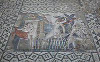 Roman mosaic of Diana and her nymph surprised by Actaeon while bathing, 3rd century AD, from the House of the Procession of Venus, Volubilis, Northern Morocco. Volubilis was founded in the 3rd century BC by the Phoenicians and was a Roman settlement from the 1st century AD. Volubilis was a thriving Roman olive growing town until 280 AD and was settled until the 11th century. The buildings were largely destroyed by an earthquake in the 18th century and have since been excavated and partly restored. Volubilis was listed as a UNESCO World Heritage Site in 1997. Picture by Manuel Cohen