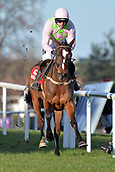 2nd February 2019, Leopardstown, Dublin, Ireland; Min with Ruby Walsh up wins the Dublin Chase. Leopardstown racecourse.