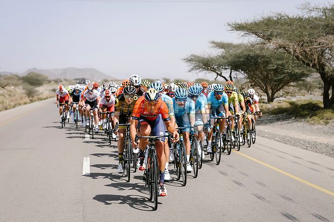 The peloton with Antonio Nibali (ITA) Bahrain-Merida, Pim Ligthart (NED) Direct Energie and Artyom Zakharov (KAZ) Astana on the front during Stage 5 of the 10th Tour of Oman 2019, running 152km from Samayil to Jabal Al Akhdhar (Green Mountain), Oman. 20th February 2019.<br /> Picture: ASO/P. Ballet | Cyclefile<br /> All photos usage must carry mandatory copyright credit (© Cyclefile | ASO/P. Ballet)