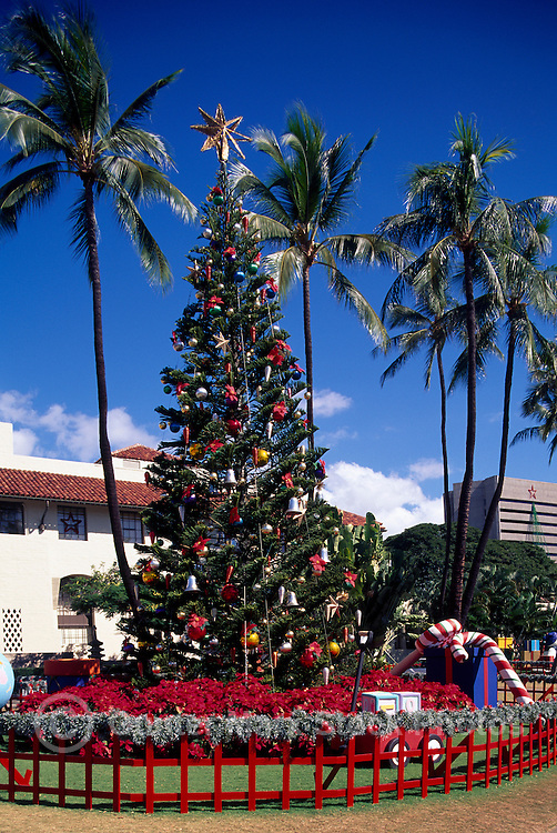 honolulu oahu hawaii hi usa christmas tree and decorations at honolulu