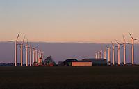 DEUTSCHLAND Windkraftanlagen NEG Micon und alte Windmuehle im Abendlicht in Schleswig Holstein / GERMANY windfarm with new wind turbine NEG Micon and old windmill in Northern Germany