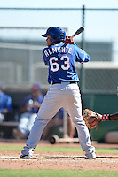 Texas Rangers outfielder Jose Almonte (63) during an Instructional League game against the Cincinnati Reds on October 3, 2014 at Surprise Stadium Training Complex in Surprise, Arizona.  (Mike Janes/Four Seam Images)