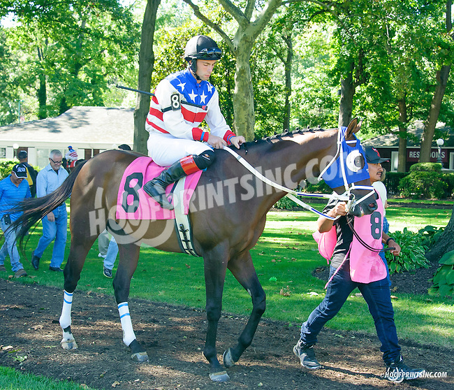 Distorted Emotion before The Longines Gentlemans International Fegentri race at Delaware Park on 9/14/15 - Mr. Gonzalo Carmena aboard